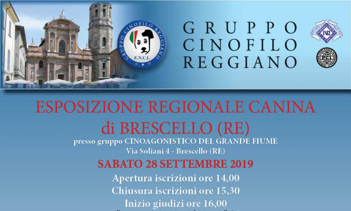 Expocani Calendario.Gruppo Cinofilo Reggiano